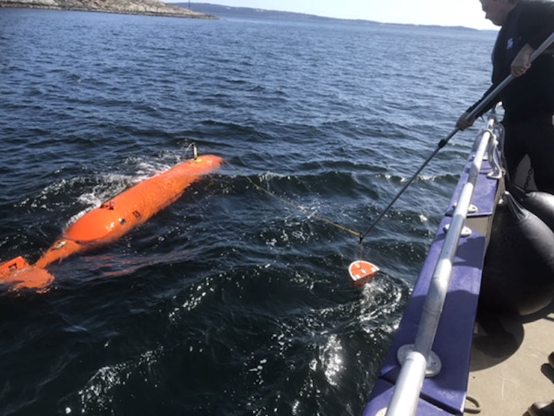 Autonomous Underwater Vehicle (AUV)
