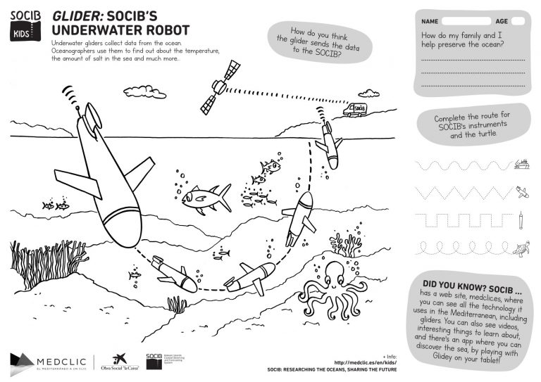 Glider Activity Colouring sheet